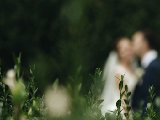Весільний день: Домініка + Іван